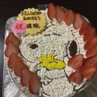 #140;バースディ+退院       祝ケーキ