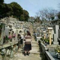 🎵 お彼岸詣りで思うこと @ Hirono  family,   Only!
