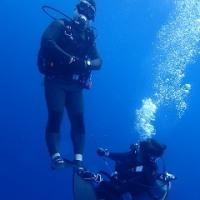 連休最後もアリエル号でケラマへ! 沖縄ダイビング 那覇シーマリン