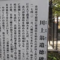 頼朝と市川葛飾八幡宮 syu散歩