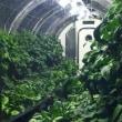 火星で植物工場を!