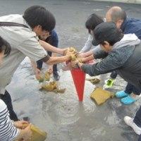 運動会校庭整備 保護者の皆さんに感謝【5月27日(土)】