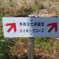 秩父七峰縦走ハイキング