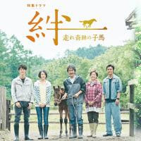 NHKドラマ「絆~走れ奇跡の子馬」