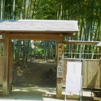 新緑の大宮公園と周辺の展覧会へ(埼玉)