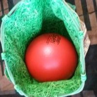 サッカーボール入れる袋(練習)