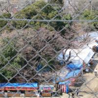 猪鼻公園(いのはなこうえん)散策