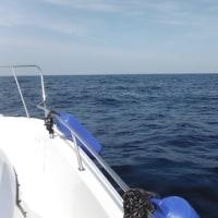 3月28日 海は気持ち良い