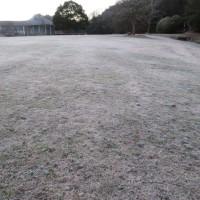 霜、 県立三木山森林公園