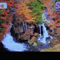 10/26 23日に見たお天気の紅葉
