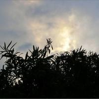 5月26日(金) 待望の雨・・・2日目