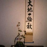 ☆淡斎会・茶花展・大盛会でした。有難うございました。☆