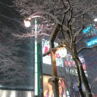 冬季アジア大会3