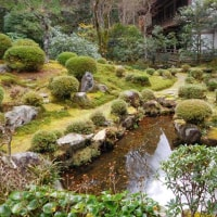 大原 三千院の庭