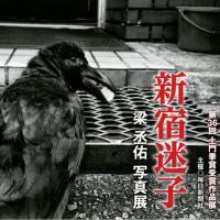 梁丞佑 写真展 新宿迷子 第36回土門拳賞受賞作品展 大阪ニコンサロン