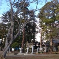 貝塚公園~大金沢~大百池公園