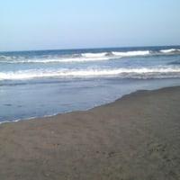 海に行った