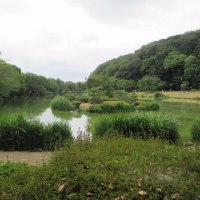 じゅん菜池公園の写真をアップします