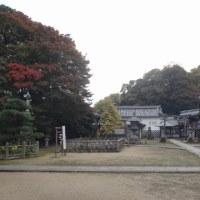 大山崎町 観音寺の紅葉