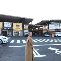2017お節〜藤よしカツカレー