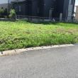 子供の成長も 雑草の生育も 想像以上に早い 茨城 利根