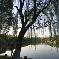中国「Focalink社 オカリナフェスティバル2017」その4