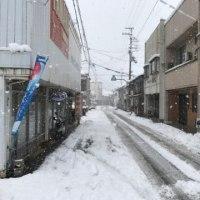 No,1285『雪そして雪』