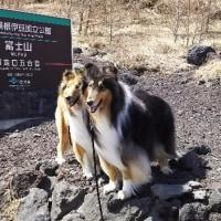 富士山登頂への道!
