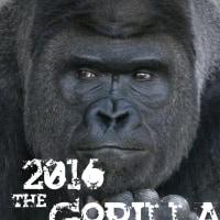 2016年年賀状デザイン案