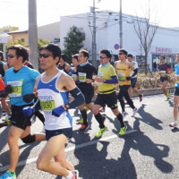 今年も京都マラソンプチ追っかけしました。