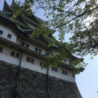 4月の城攻め