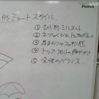 コピーカット講習を行いました。
