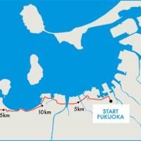福岡マラソンエントリー