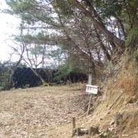 長水山(ハイキングで体馴らす)