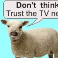 #羊の国、日本のココがスゴイ