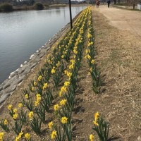 春はもうすぐ♪