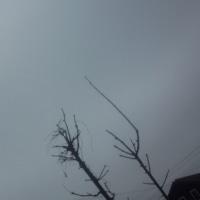 仙台の空3月21日、火曜日