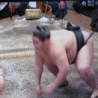 日本人横綱