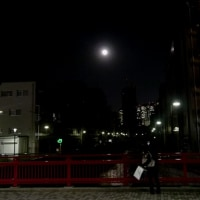 新年の満月  今宵月 月光浴パワー 炸裂!  2 中野新橋に上るお月さま