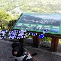 「 琴平公園 」をお散歩です~♪