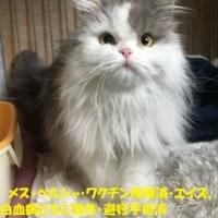嬉しいお知らせ 17'ぱーと6(^_-)-☆