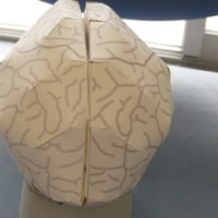 ペーパークラフト脳1