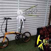 クォン・サンウ ソン・ドンイル『探偵なふたり』 ソン・ドンイルが乗ってた自転車🚴💨~そして待機してるサンウ🚲