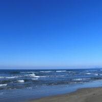 2月のビーチコーミング
