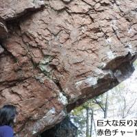 地域力ネットワーク研修会 in しむかっぷ(北海道農村漁村地域力ネットワーク主催)