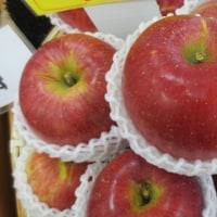 長野のリンゴです