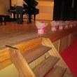 発表会の会場のブーゲンビリア鉢