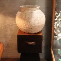 大阪でセグロのクサレと壺