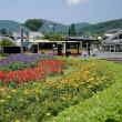 カメラ散歩(秦野戸川公園)