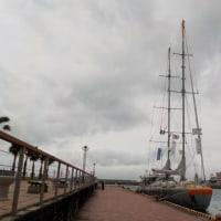 2017年4月海洋生物調査船「Tara号」沖縄(北谷港)寄港